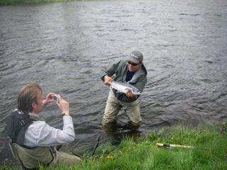 kala ja ghillie